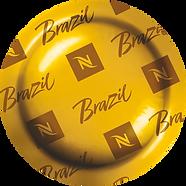 brazil_L.png