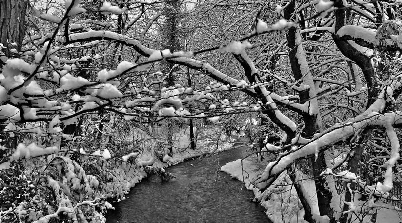 Ginebra, Invierno 2.jpeg