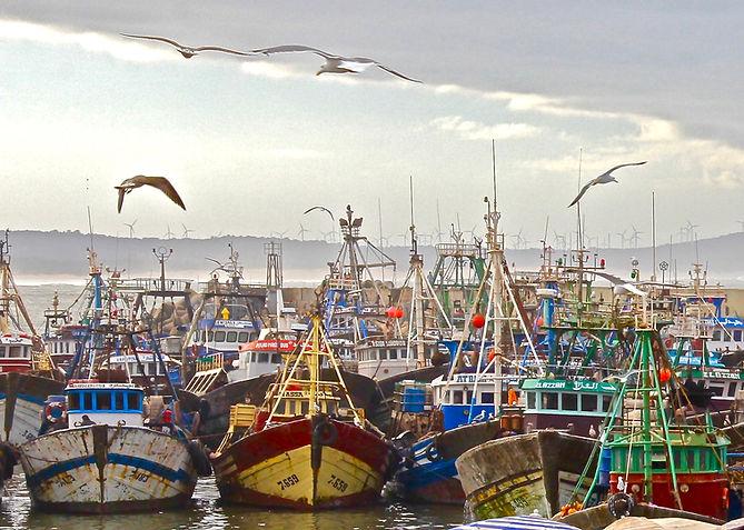 Essaouira, Viejo Puerto 4.jpg