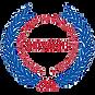 SDVOSB-CVE-Logo.png