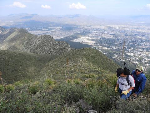 20170730_Reforestación_Los_Pies_del_Muer