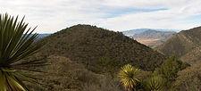 2007-12-10_Cuauhtémoc__panoramica.jpg