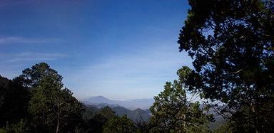 Vista desde la Alameda.jpg