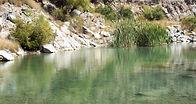 10 octubre 2006-05-09 y 10 Rancho Bosque