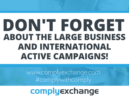 Don't Forget About the Large Business and International Active Campaigns!