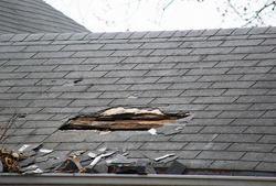 Roof damage in fort lauderdale, home ins
