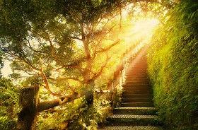 chemin soleil.jpg