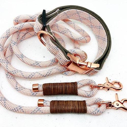 Tau- Polsterhalsband + 1.5m Leine