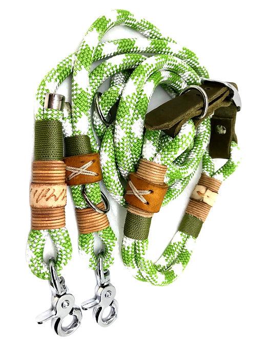 2.2m Leine + Halsband 36-41cm
