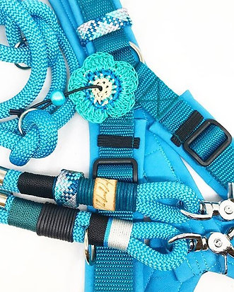 Y-Harness with adjustable leash