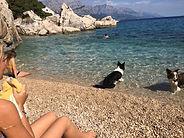 beach 03.jpg