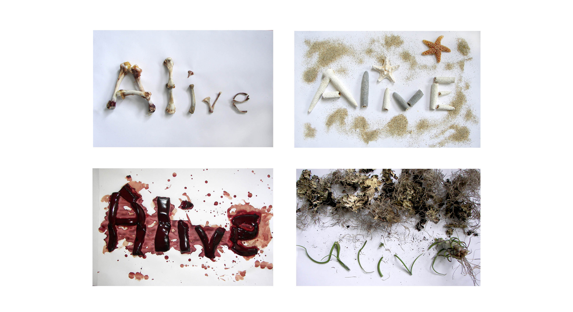 Definition of Alive