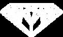 kaleido_white_logo.png