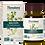 Thumbnail: Organic Bacopa (60)