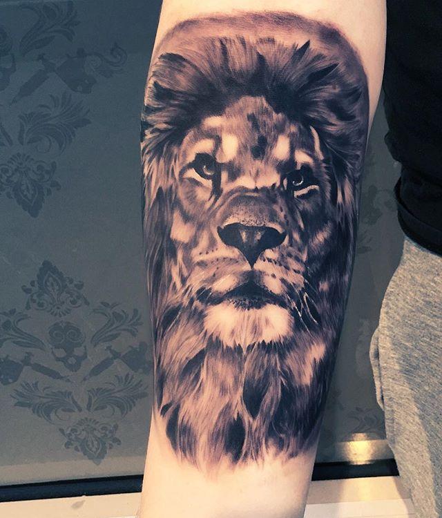 Lion piece thanks Joel you sat like a rock