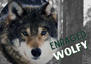 Watch EnragedWolfy Live
