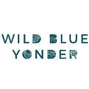 wild blue yonder.jpg