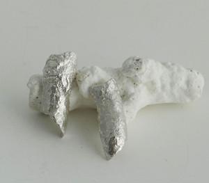 Silver Coral Earrings £80
