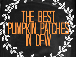 The Best Pumpkin Patches in DFW