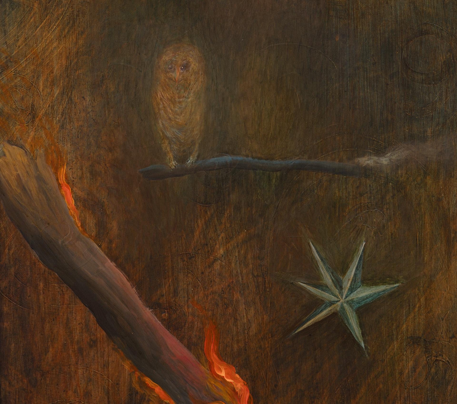 oheň__detail_sova