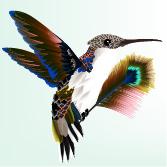 6-BirdWithFeather