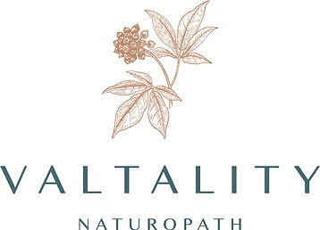 VALTALITY CMYK_Logo.jpg