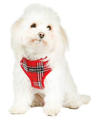 Red Checked Tartan Harness
