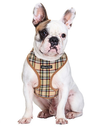 Brown Check Tartan Harness - SMALL ONLY