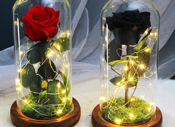 Dried Flowers With Night Light