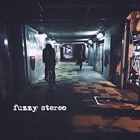 fuzzy stereo 1st.jpg