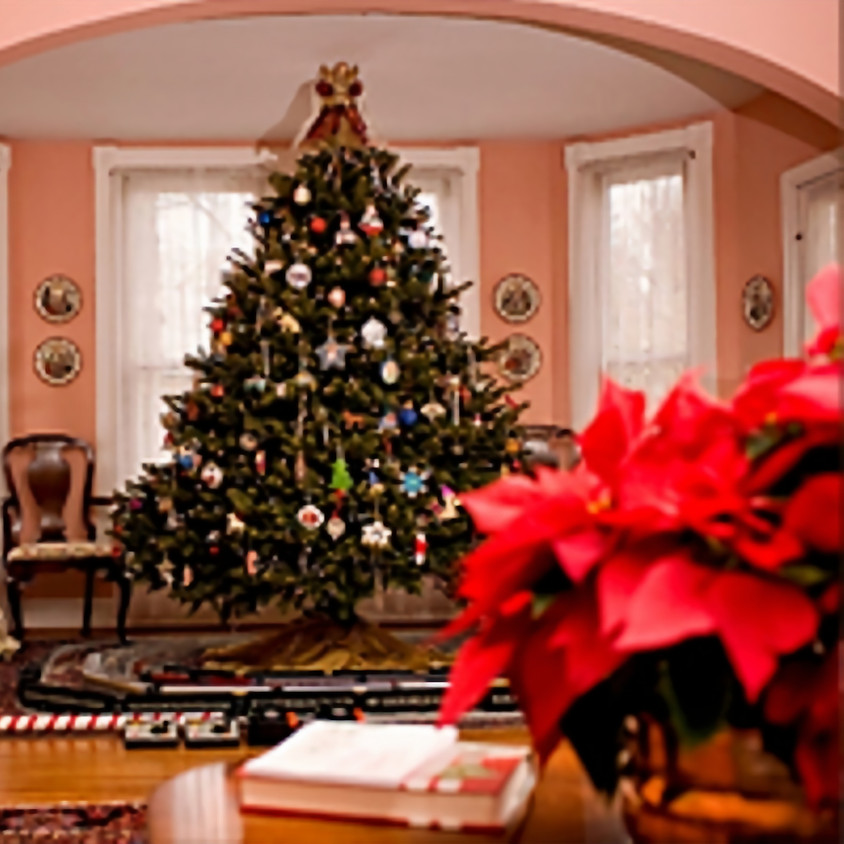 2019 Loganville Christmas Tour of Homes