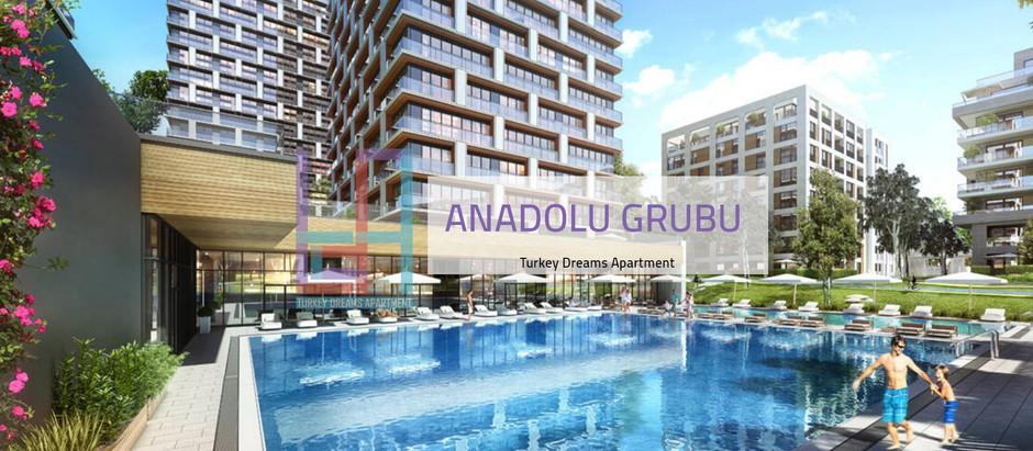 شركة أناضول جروب في تركيا