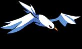 Sea Beach Seagull.png