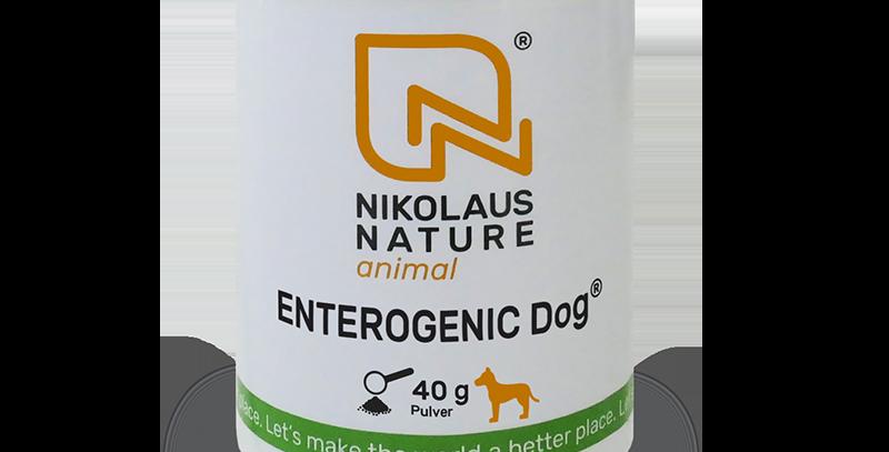 ENTEROGENIC DOG