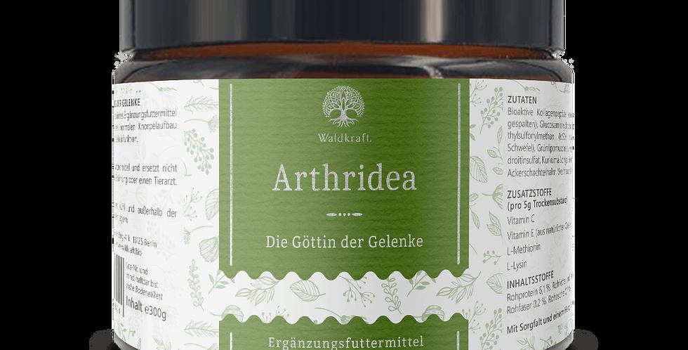 ARTHRIDEA - GÖTTIN DER GELENKE 300g