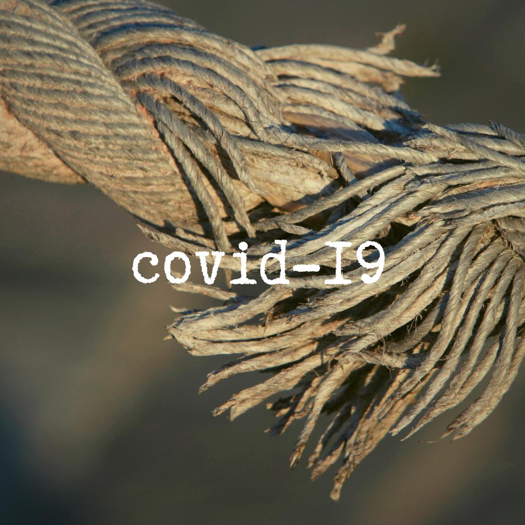 as feiras e a covid-19