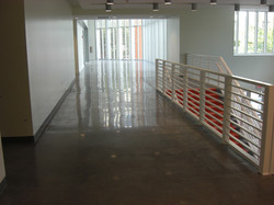 Transition Line Polished Concrete Fl