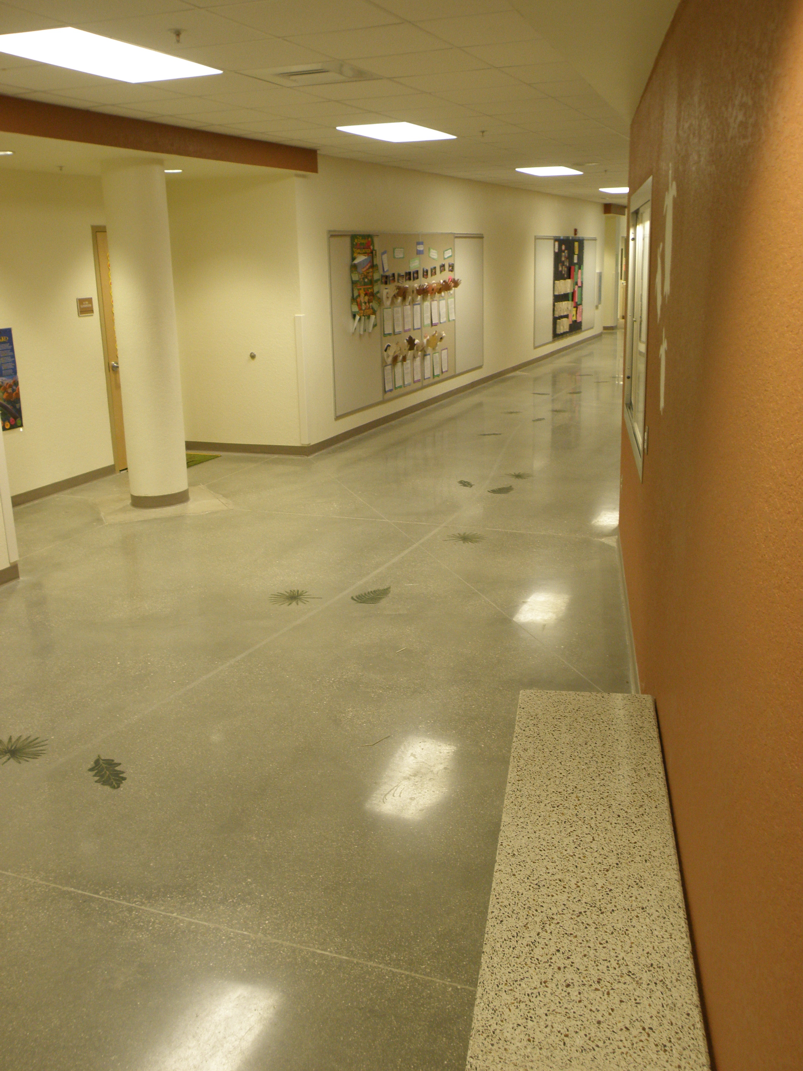 Eco Friendly Flooring Vero Beach Polishing Genie Llc