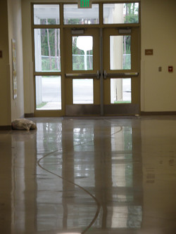 Polished Flooring