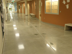 Polished Concrete Pine Jog