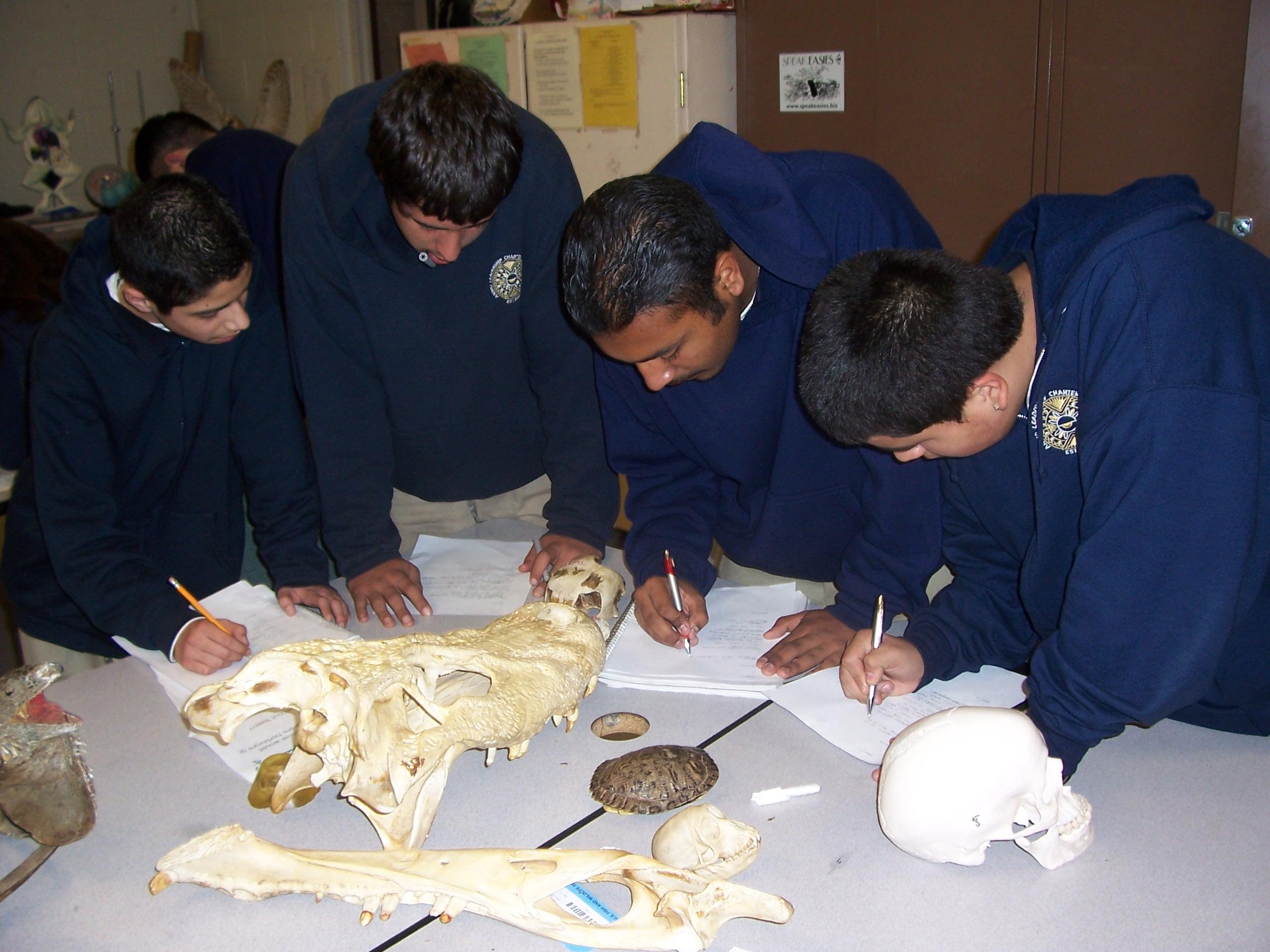 Inquiry Teaching