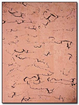 Grietas de Ladrillo.jpg