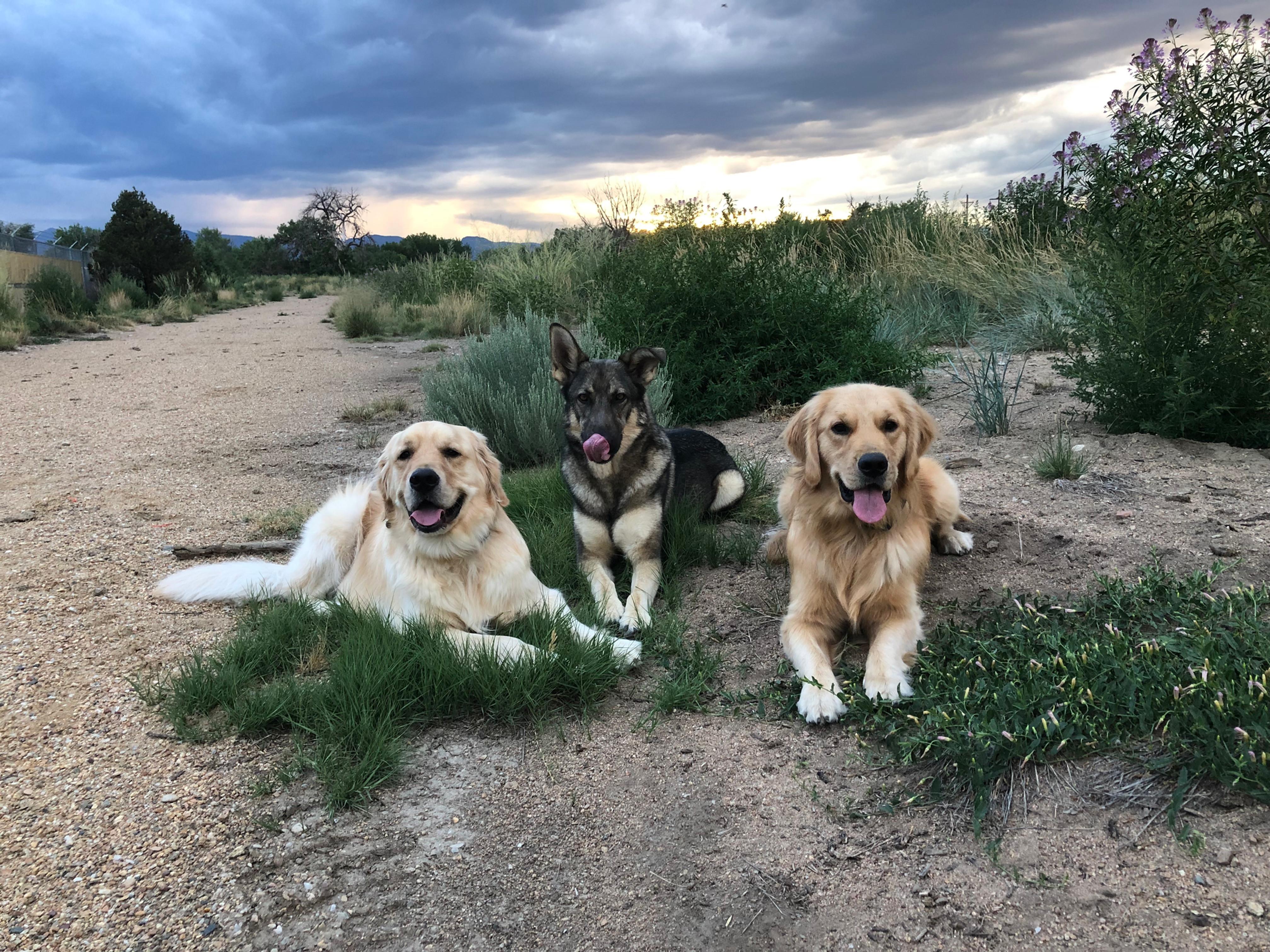 Individual Training Hike/Walk