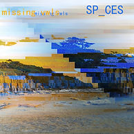 SP_CES new cover 2.jpeg