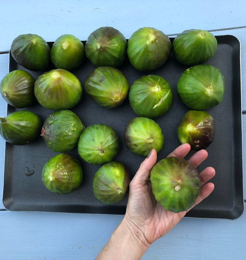Figues locales