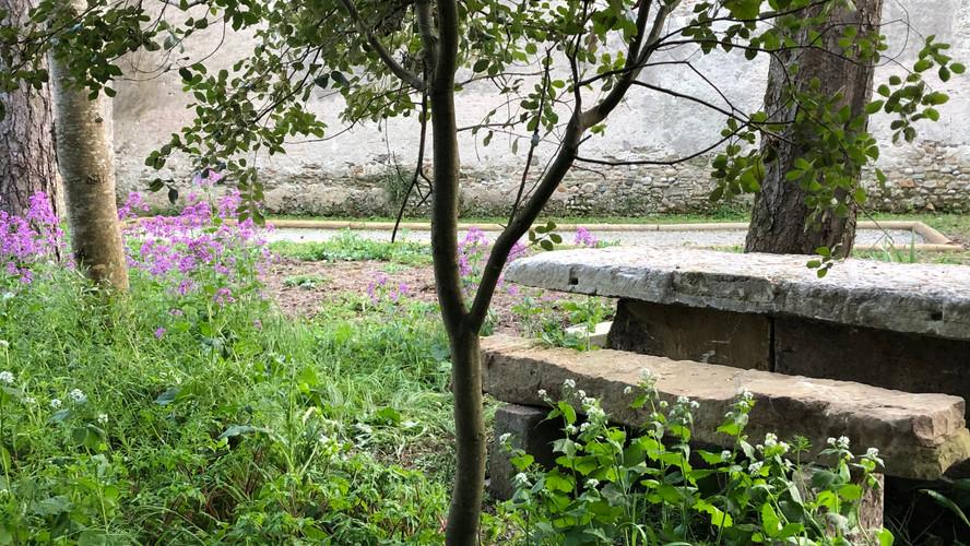 le_grenier_occitan_vue_table_terrain_petanque