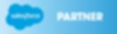 Salesforce_Partner_Badge_Trnsp_Hrzntl_RG