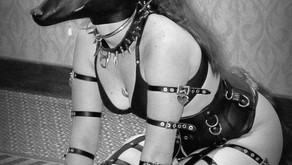 Human Pet Play in BDSM