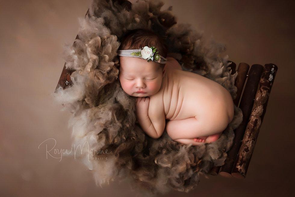 photographe naissance studio