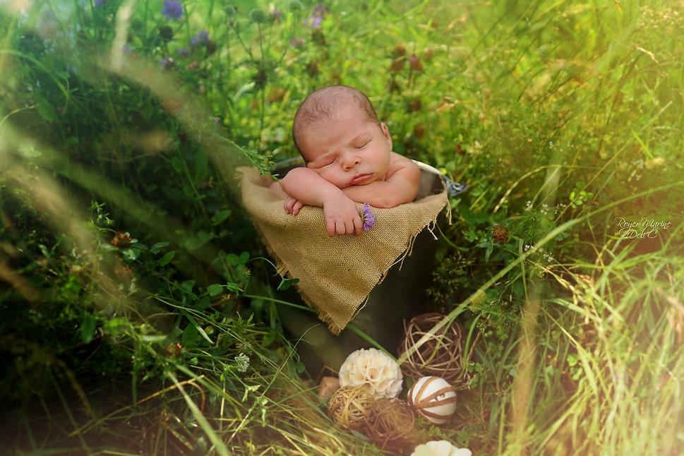 photographe.nouveau-né.Lot